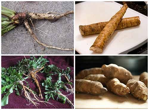 4 Nutritious Spring Roots To Harvest