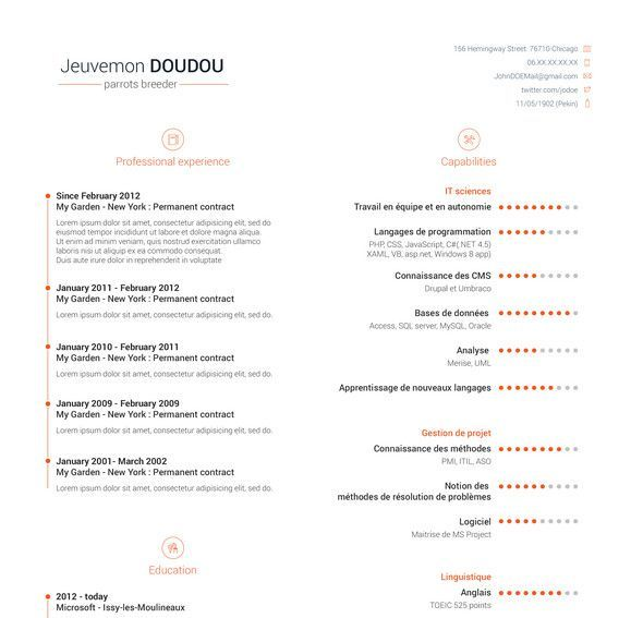 Best Free Resume Templates HttpDesigneroptimusComFree