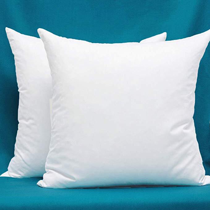 22x22 Decorative Throw Pillow Inserts