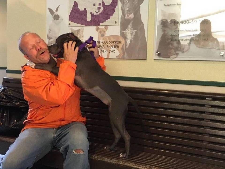 Sacramento Firefighter Adopts Chunk The Dog He Rescued