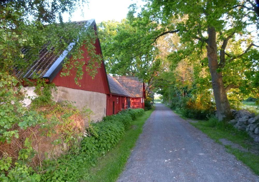 Countryroad by peterliendeborg