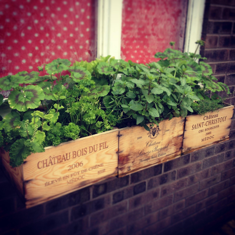 Window Box Herb Garden Made From Vintage Wine Crates
