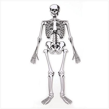 It S A Boy Baseball Skeleton Floor Puzzle Skeletal System