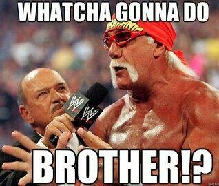 Yeah What You Gonna Do Best Wrestlers Funny Wrestling Hulk Hogan