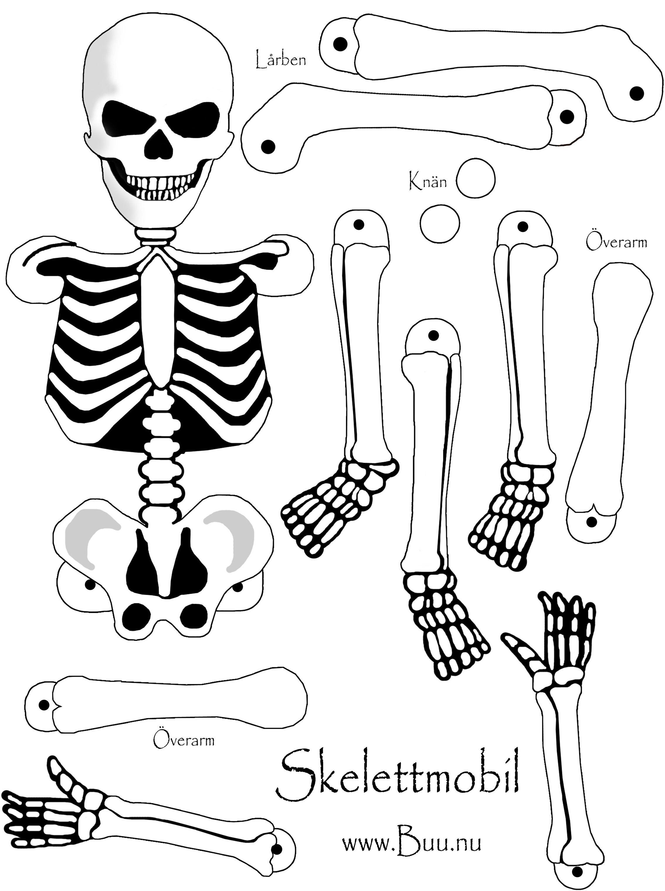 halloween pyssel skelett - Sök på Google | Pyssel - Kroppen | Pinterest