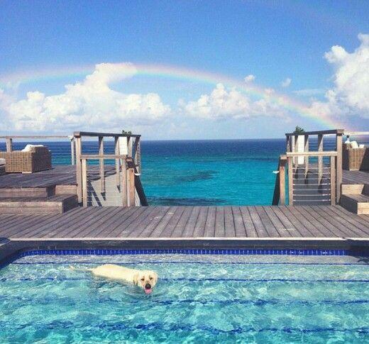 Beach House, Luxury, White, Blue, Relaxing, Deck, Home, Dream