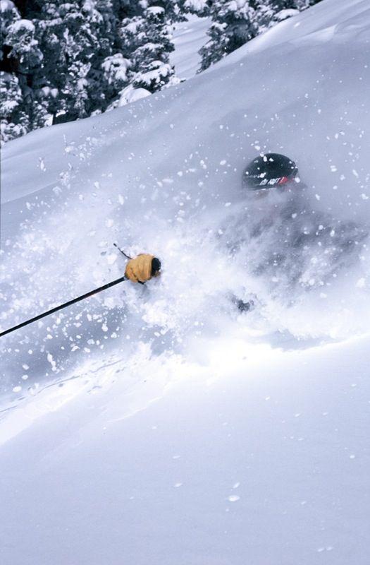 Skiing Powder Ski Inspiration Skiing Ski Mountain
