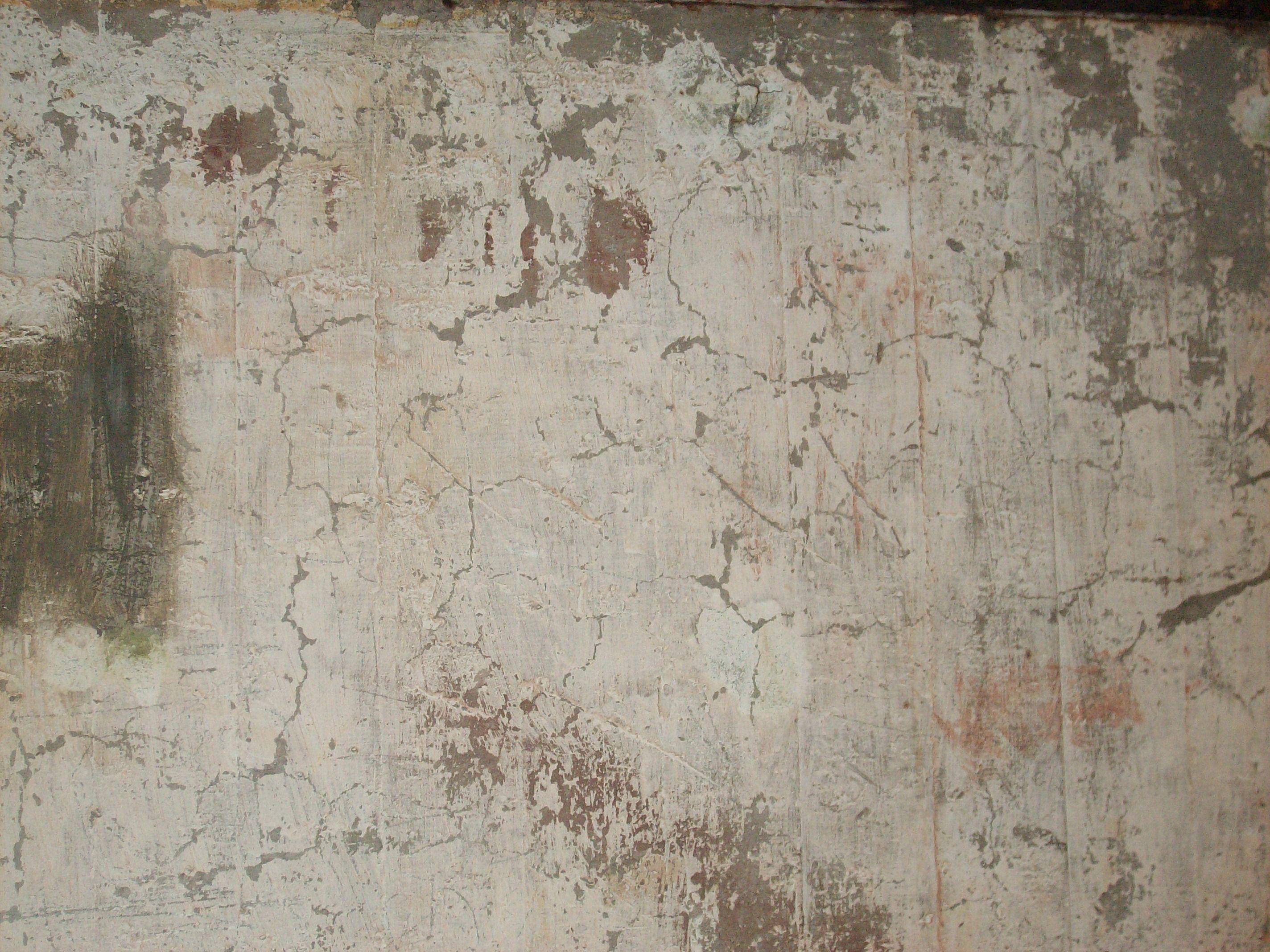 Milky Blast Concrete Wall Concrete Painting