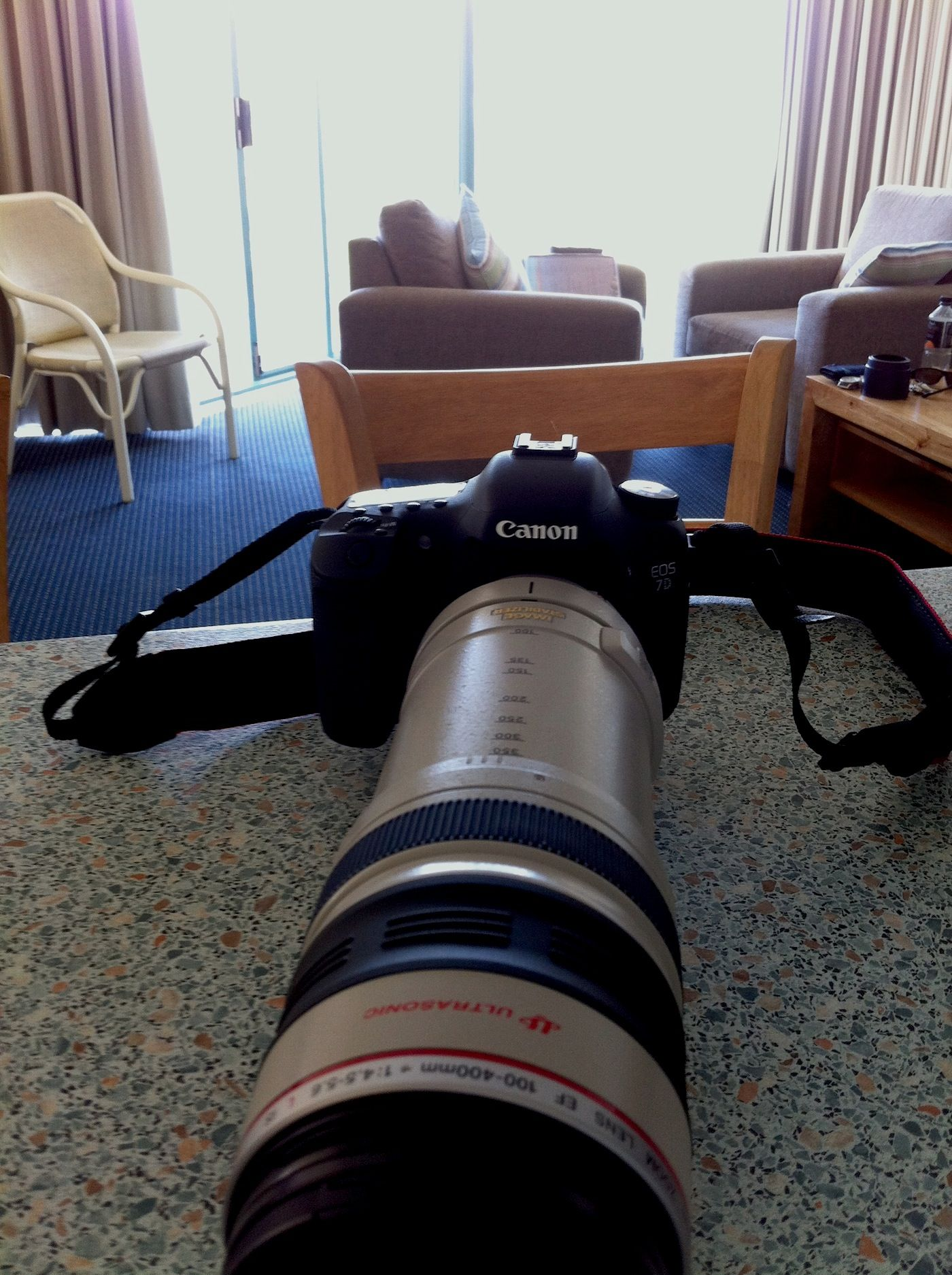 Canon 100 to 400 cool lens that does a good job