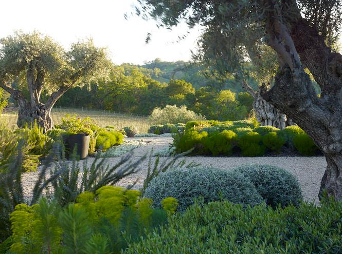 Menu For Olive Garden: Another Garden Gawker: Andrea Cochran Landscape