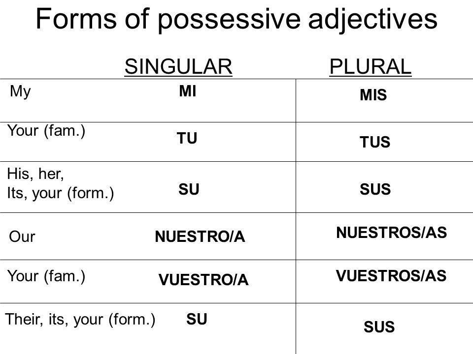 Spanish possessive adjectives - short form | English and Spanish ...