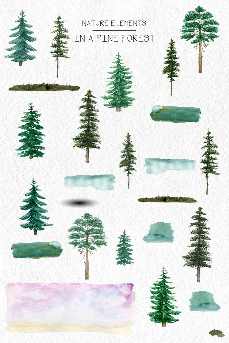 Watercolor Pine Trees Clipart Conifers Outdoor Background Etsy In 2021 Clip Art Tree Clipart Fall Watercolor