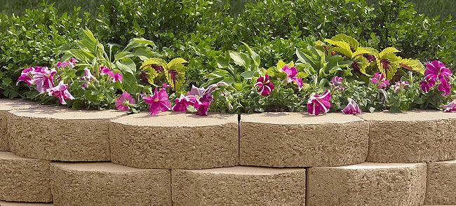 Raised Flower Bed Design Ideas l amazing flower garden ideas with stone raised bed design with raised gardens ideas and gardening in raised beds 800x532 1000 Images About Gardening Ideas On Pinterest Raised Beds Hedges And Bricks