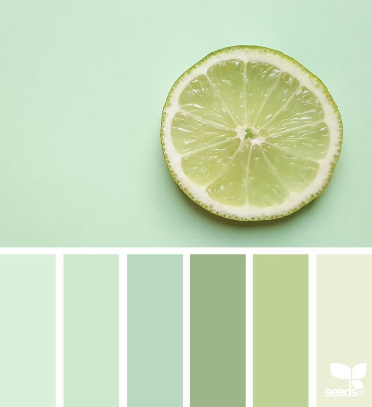 { fresh hues } | image via: @georgina.ambruska ... #color #palette #colorpalette #pallet #colour #colourpalette #design #seeds #designseeds #seedscolor