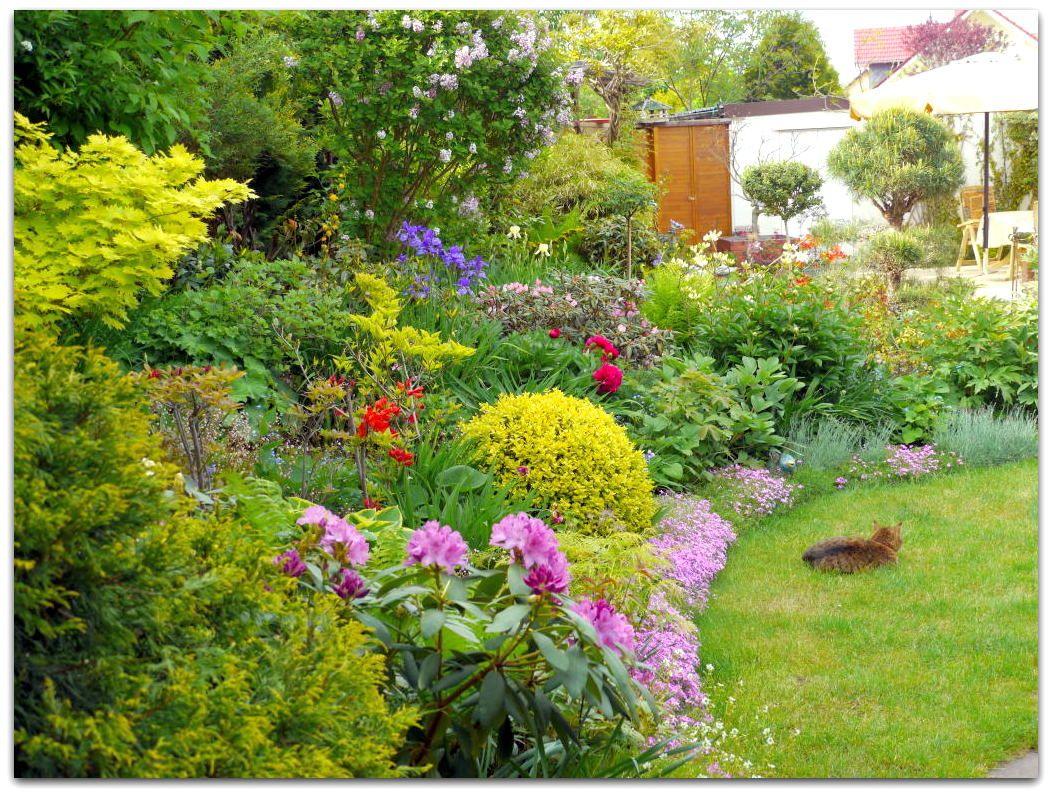 bunter garten bilder und fotos garden pinterest garten and gardens. Black Bedroom Furniture Sets. Home Design Ideas