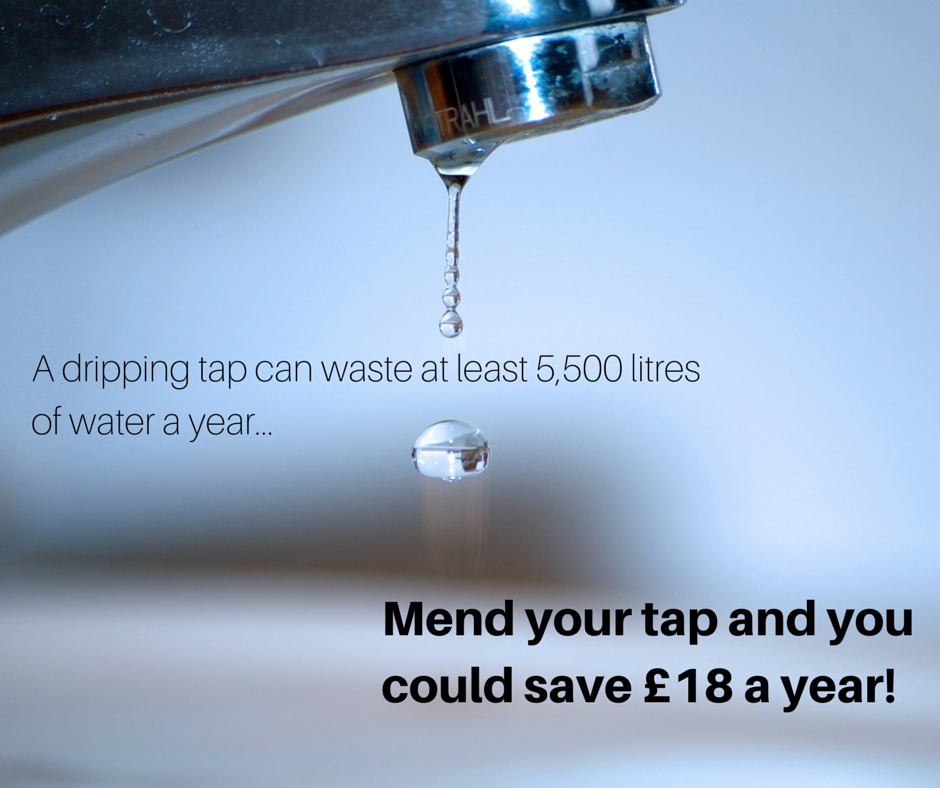 A dripping tap can waste at least 5,500 litres of water a year! Mend ...