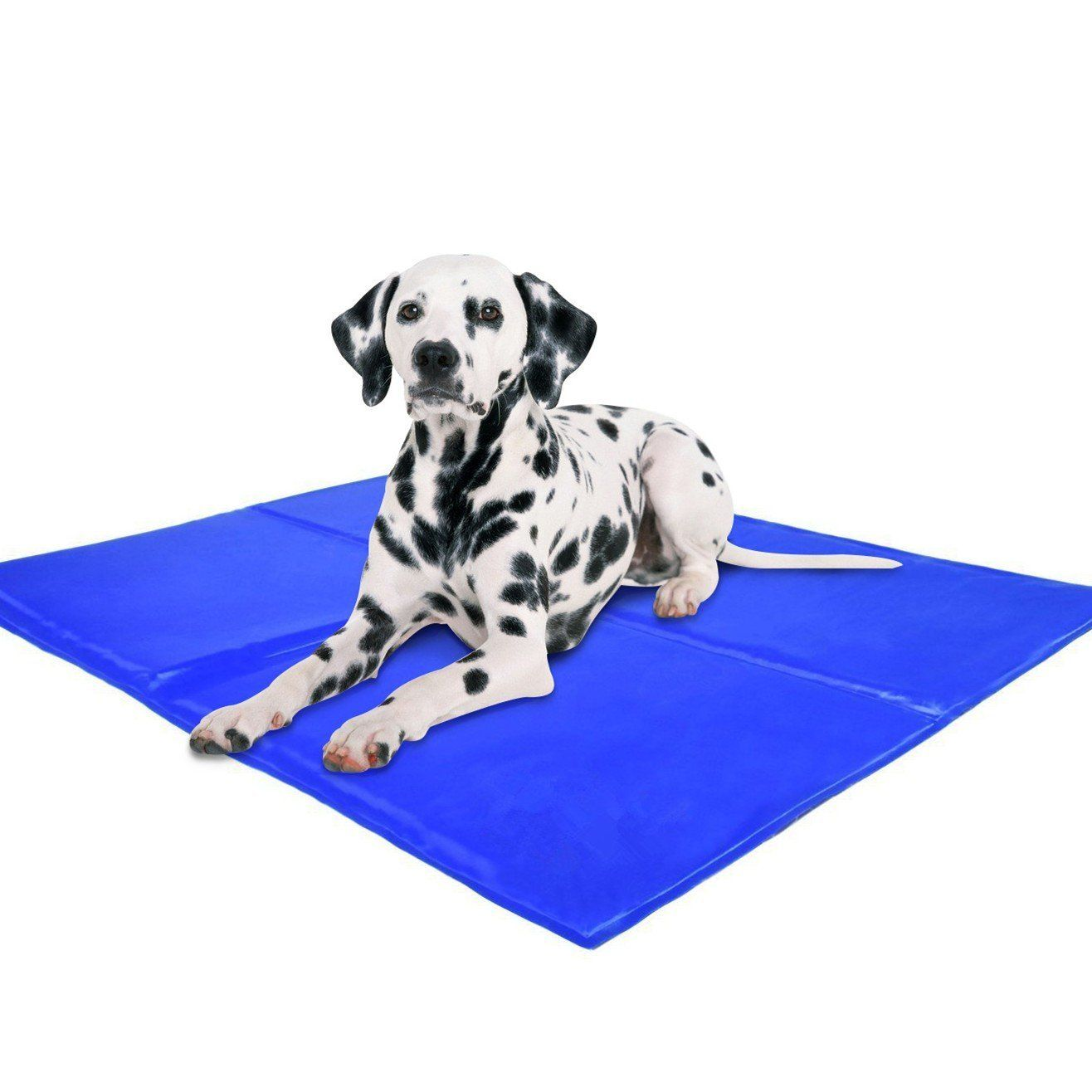 Ihoven Pet Dog Self Cooling Gel Mat Cat Chilly Ice Cooler Pad Bed Dogs Gelmat Pets Cold Pillow Beds Cats Coolmat 25x19 7inch Dog Pet Beds Dog Pillow Dog Mat