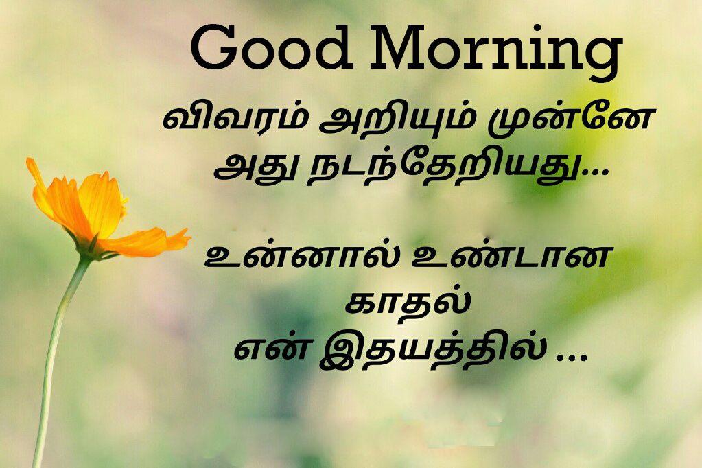 Tamil Good Morning Images 145+ Good Morning Tamil Kavithai Wallpaper Photos  Pictures Pics download in 2020 | Good morning images, Morning images, Good  morning wallpaper