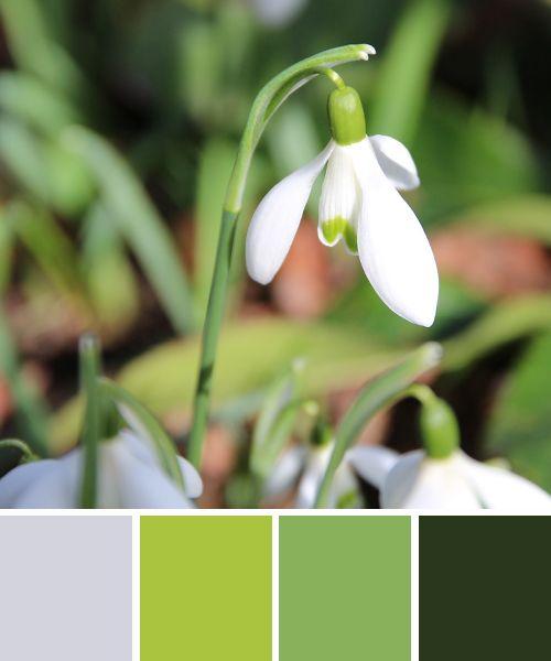 Frühlingsfarben, Zarte Grüntöne