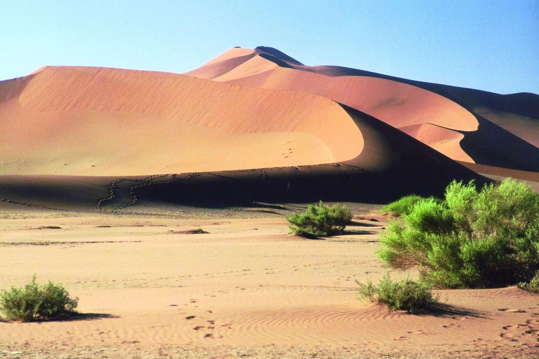 Mali Landschaft Auf Mali Reisefuhrer Reisefuhrer Reisen Reisebericht