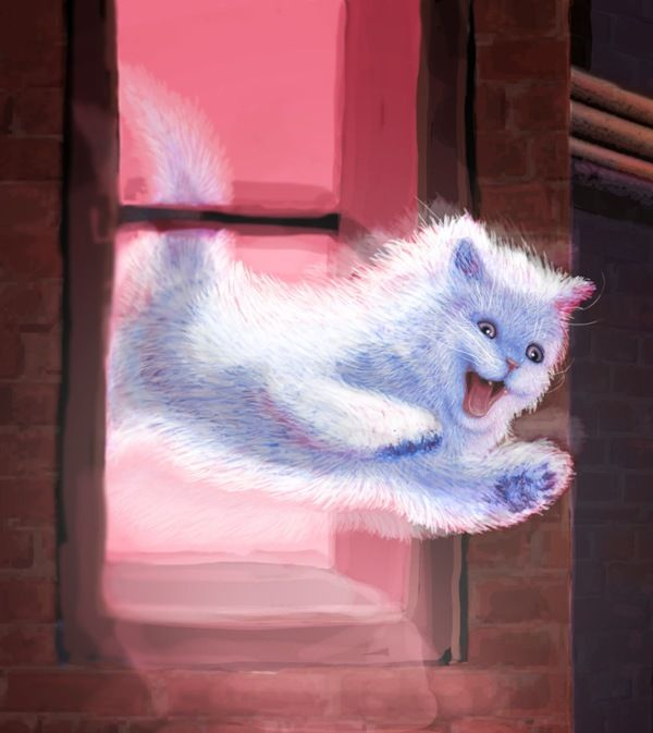 Mr Pusskins By Cameron Kramer From Sarasota Fl Cat Cats Catart Kitten Art Illustration Drawing White Fluffy Cat Painting Cat Theme Cat Art