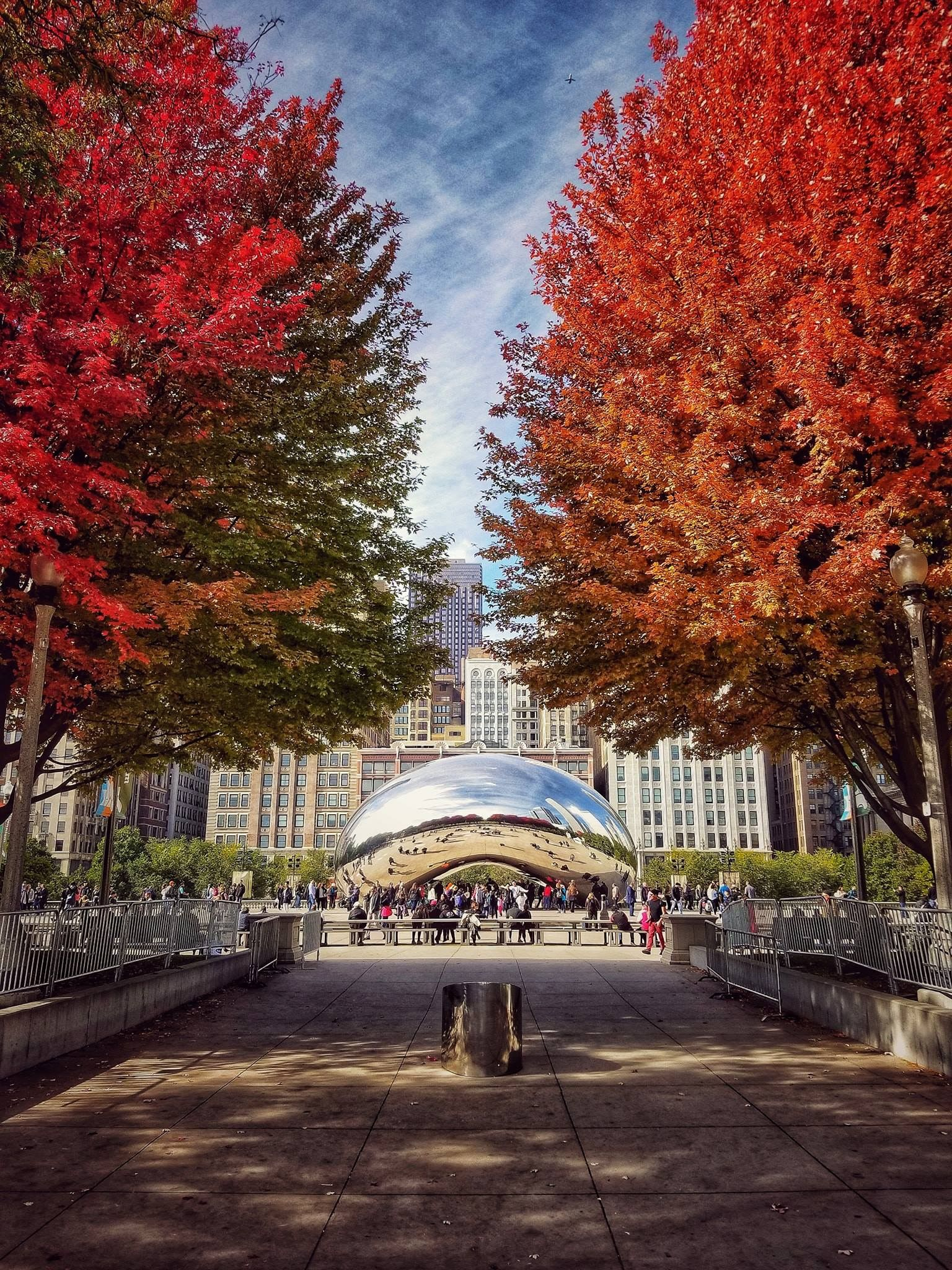 Cloudgate Or Some Call It The Bean On A Beautiful Fall Day In Millennium Park Downtown Chicago Downtown Chicago Millennium Park Chicago Illinois