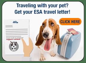 Online Emotional Support Animal Letters | Prescriptions ...