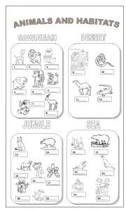 animal habitats printables vocabulary worksheets the animals animal habitats animals and. Black Bedroom Furniture Sets. Home Design Ideas