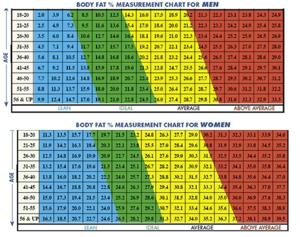 body fat percentage chart age gender