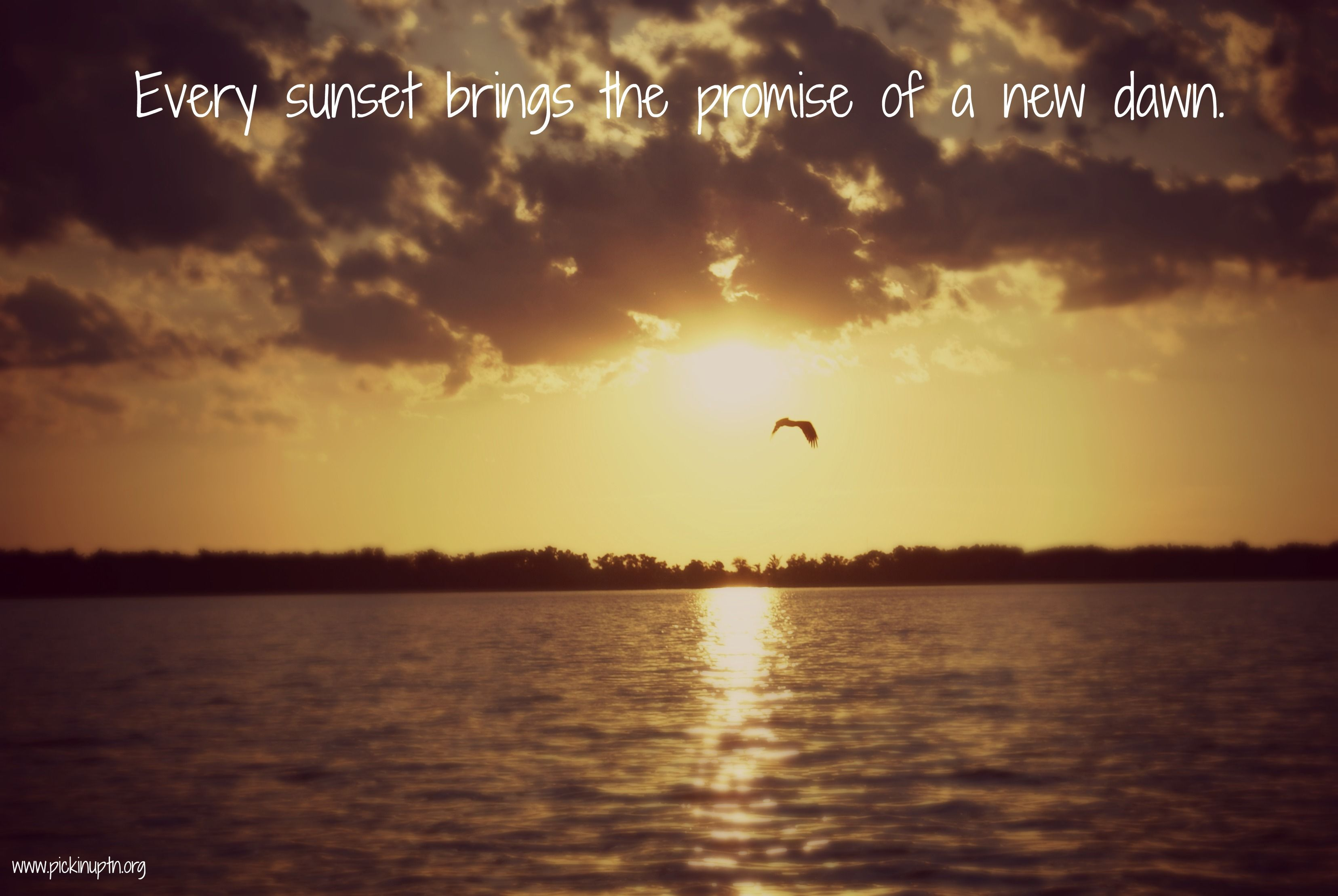 quotes dawn inspiration nature sun sunlight pknuptn