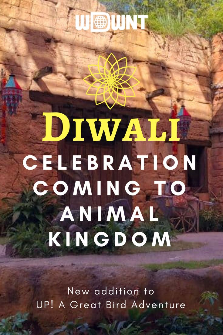 Diwali Celebration Coming to UP! A Great Bird Adventure at