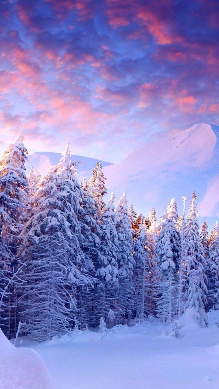 iPhone and Android Wallpapers Snowy Winter Landscape