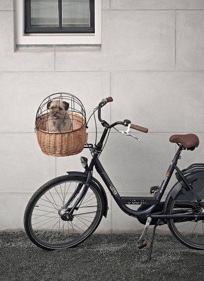 #honden #fietsmanden zijn handig en ook nog eens leuk voor op de #fiets.