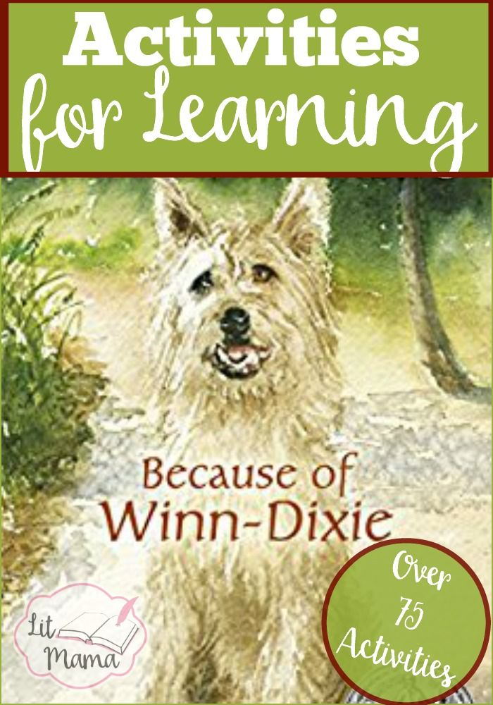 Because Of Winn Dixie Activities For Learning Reading