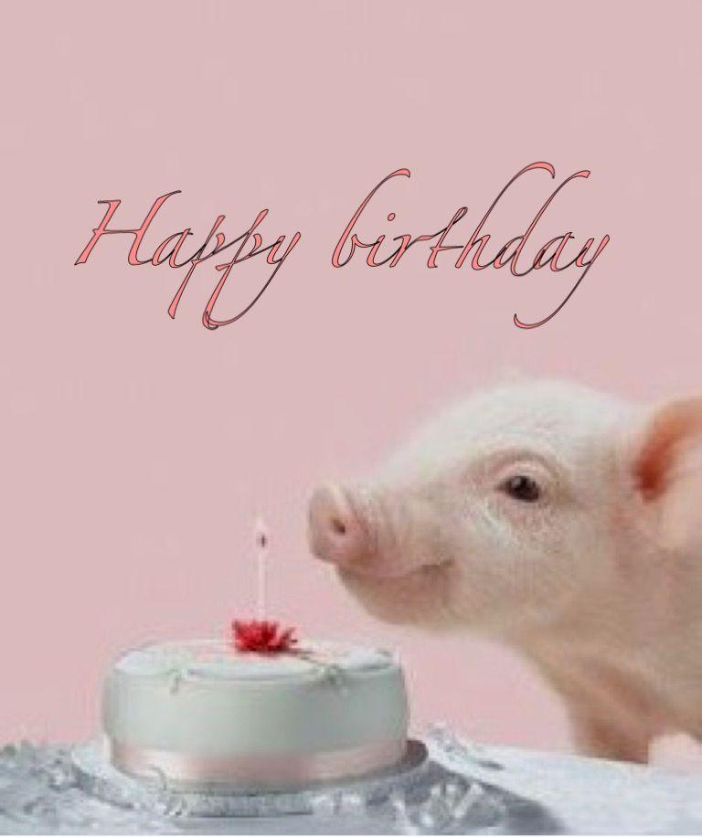 Для любимого, открытка с днем рождения с поросятами