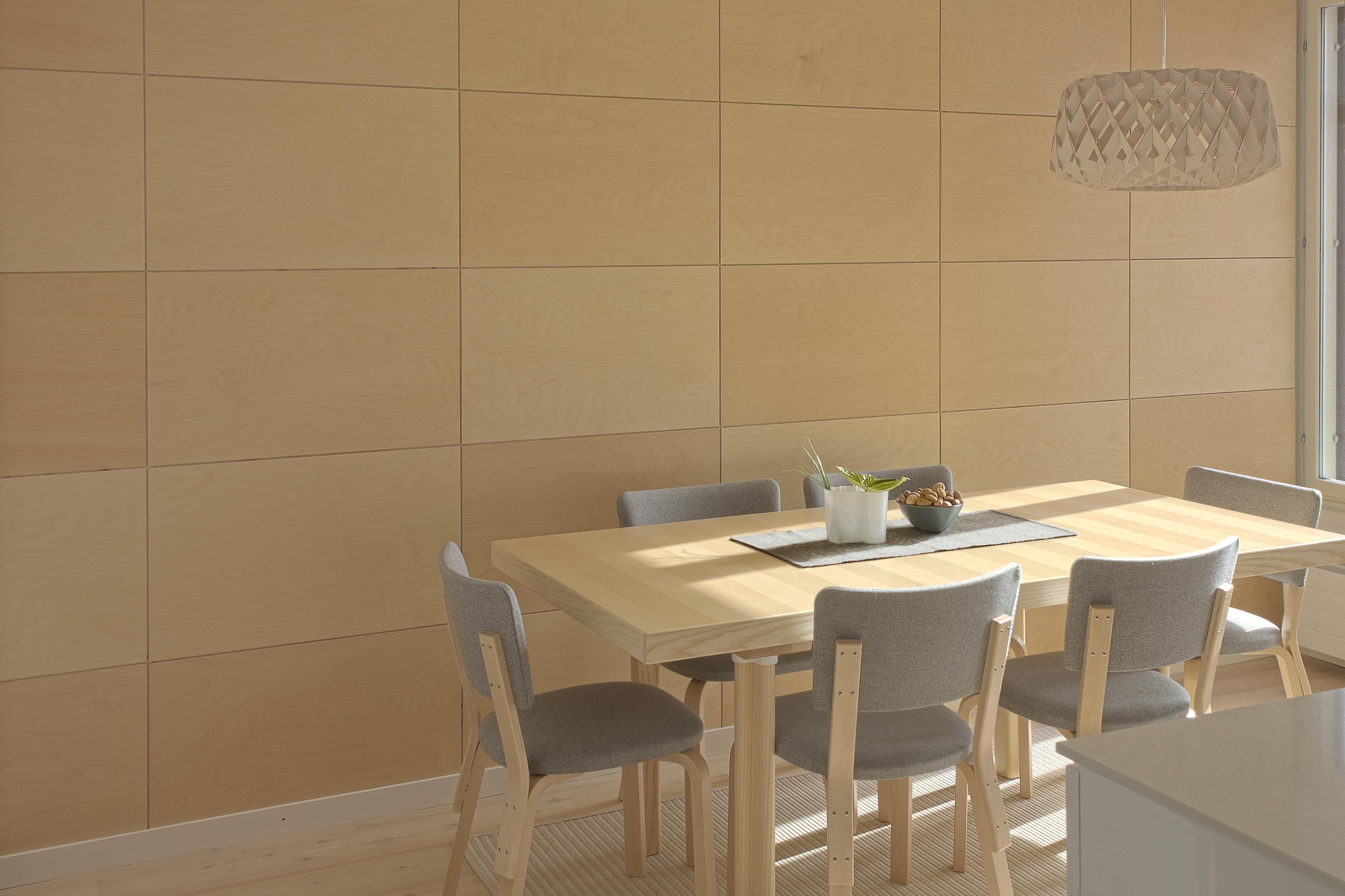 Cool Plywood Interior Walls