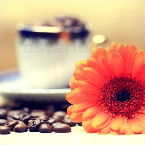 Poster Gerbera Kaffeebohnen Cappuccinotasse von Falko Follert Art-FF77 macht gute Laune am Morgen :)