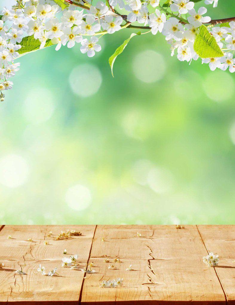 Green Bokeh In Sunlight With Floor Background For Spring Backdrop Latar Belakang Fotografi Pemandangan Fotografi