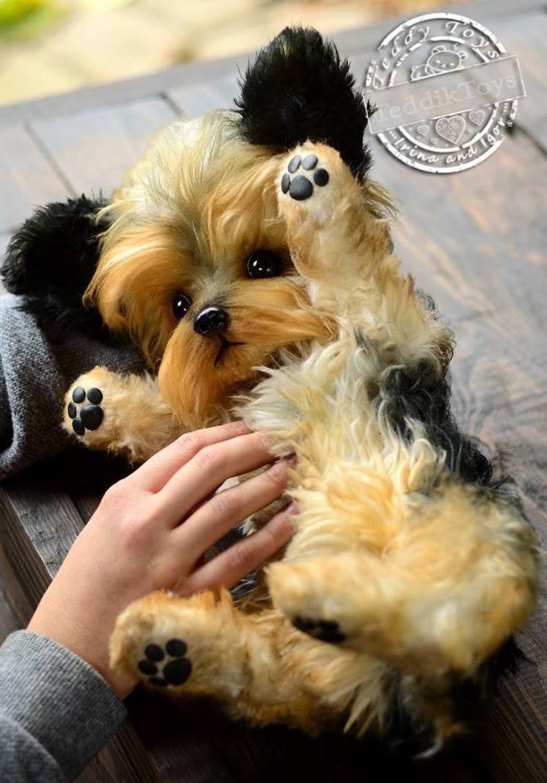 Puppy York Jemmy (make to order) Portrait pet , handmade