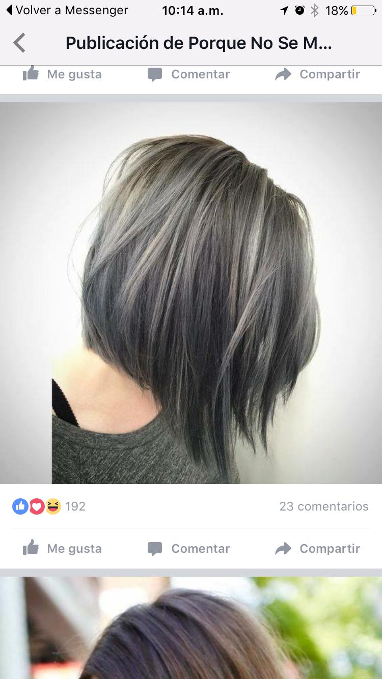 Pin by tiffany on long gray hair pinterest grey hair long grey