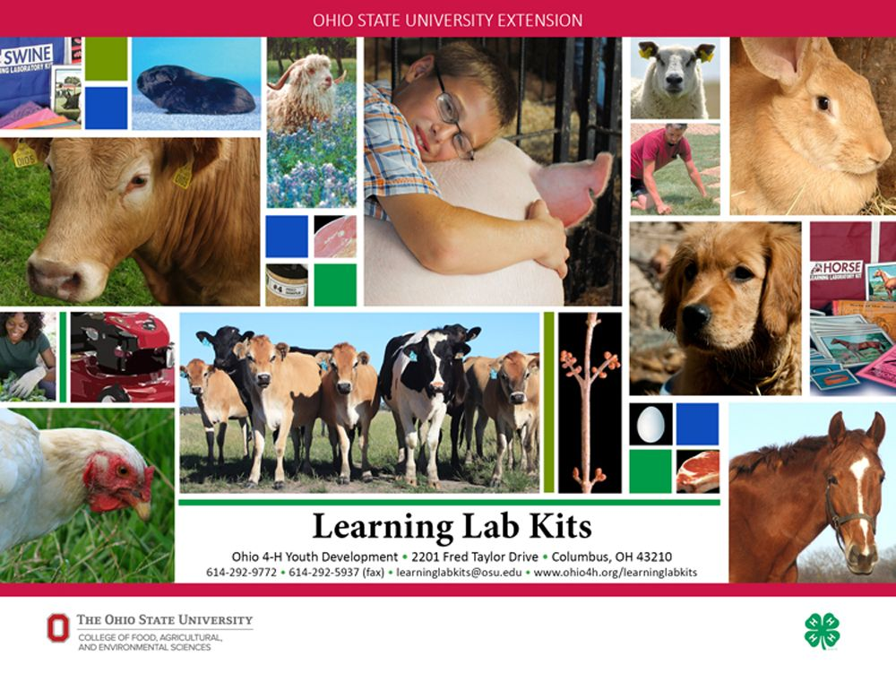 Learning Lab Kits from Ohio 4H are your answer for