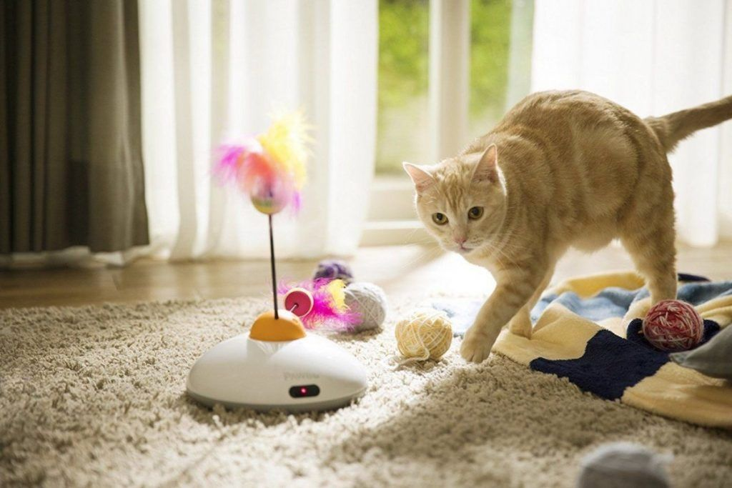 Pawbo catch remote cat toy interactive cat toys cat