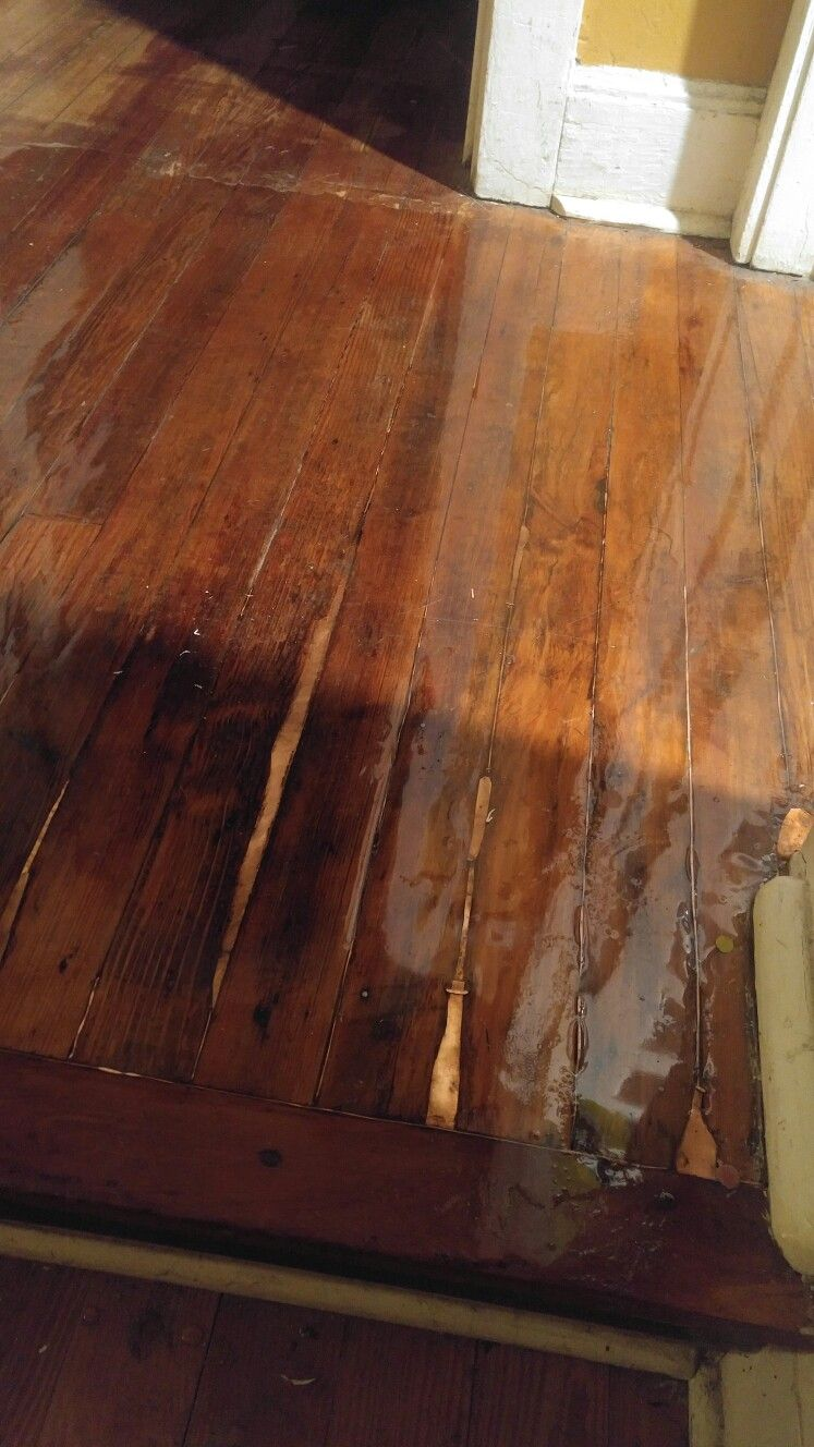 A Guide On How You Can Patch A Wooden Floor Wood Floor Repair Wood Floor Design Hardwood Floor Repair