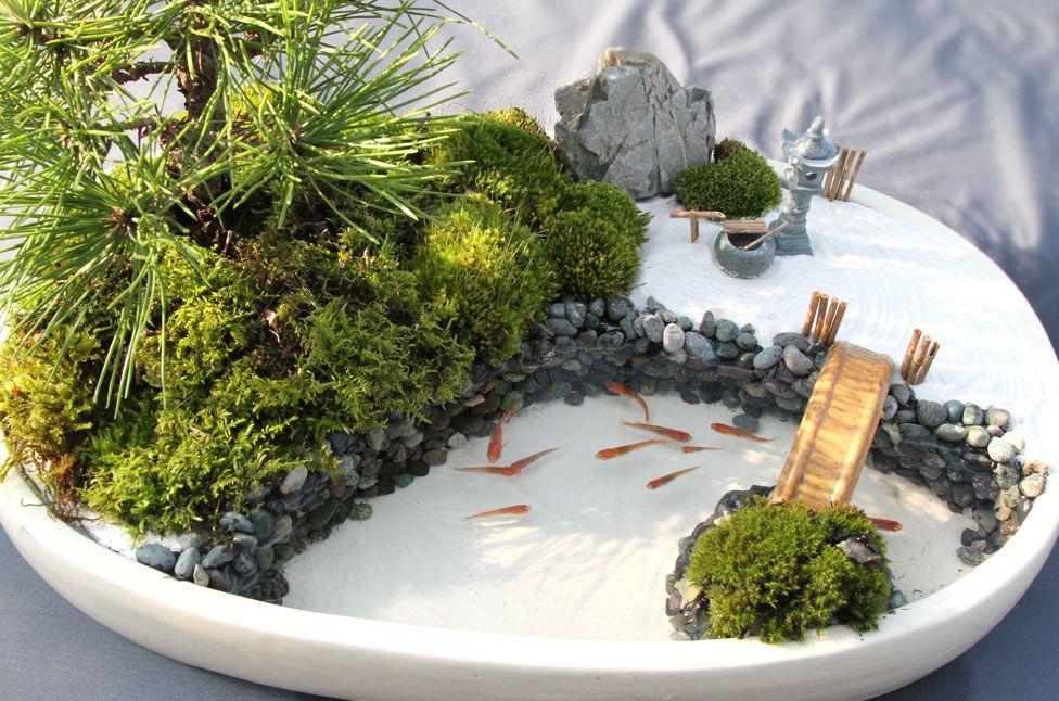 Japan In Motion Report Report 日本庭園 禅庭 水のある庭