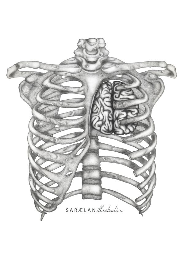 Rationality [Anatomy lessons series] by Saraelan Donati, via Behance ...