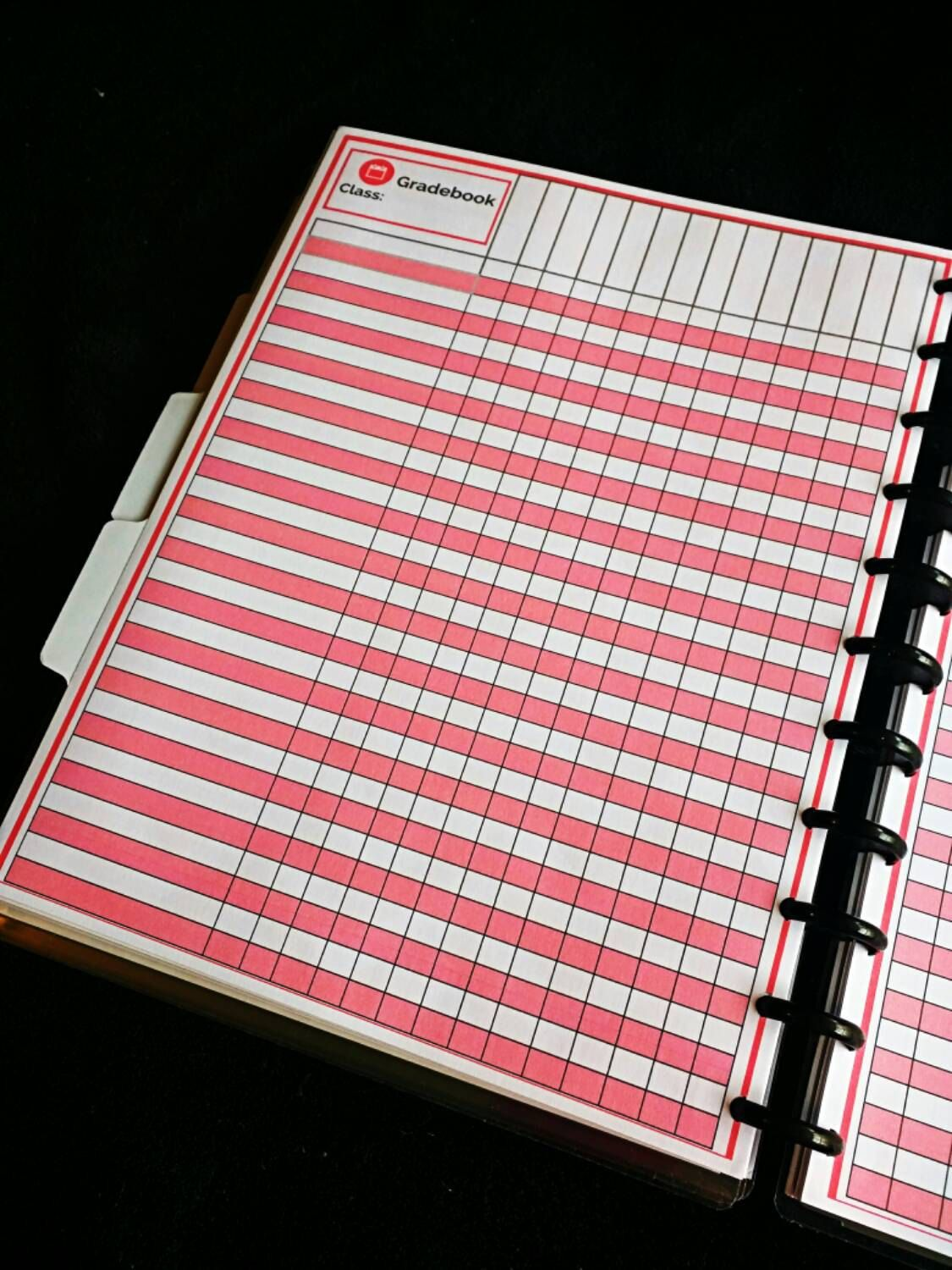 Assess This Teacher Planner Printable GradebookStudent
