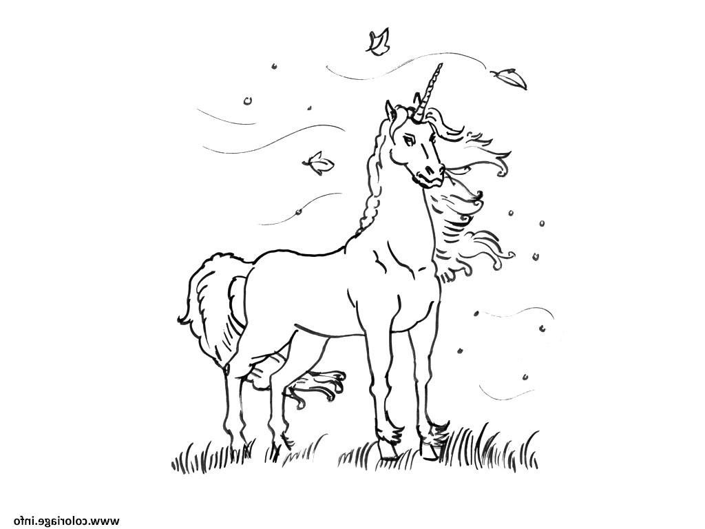 13 Prodigue Licorne Coloriage A Imprimer Collection Moose Art Drawing For Kids Coloring Pages