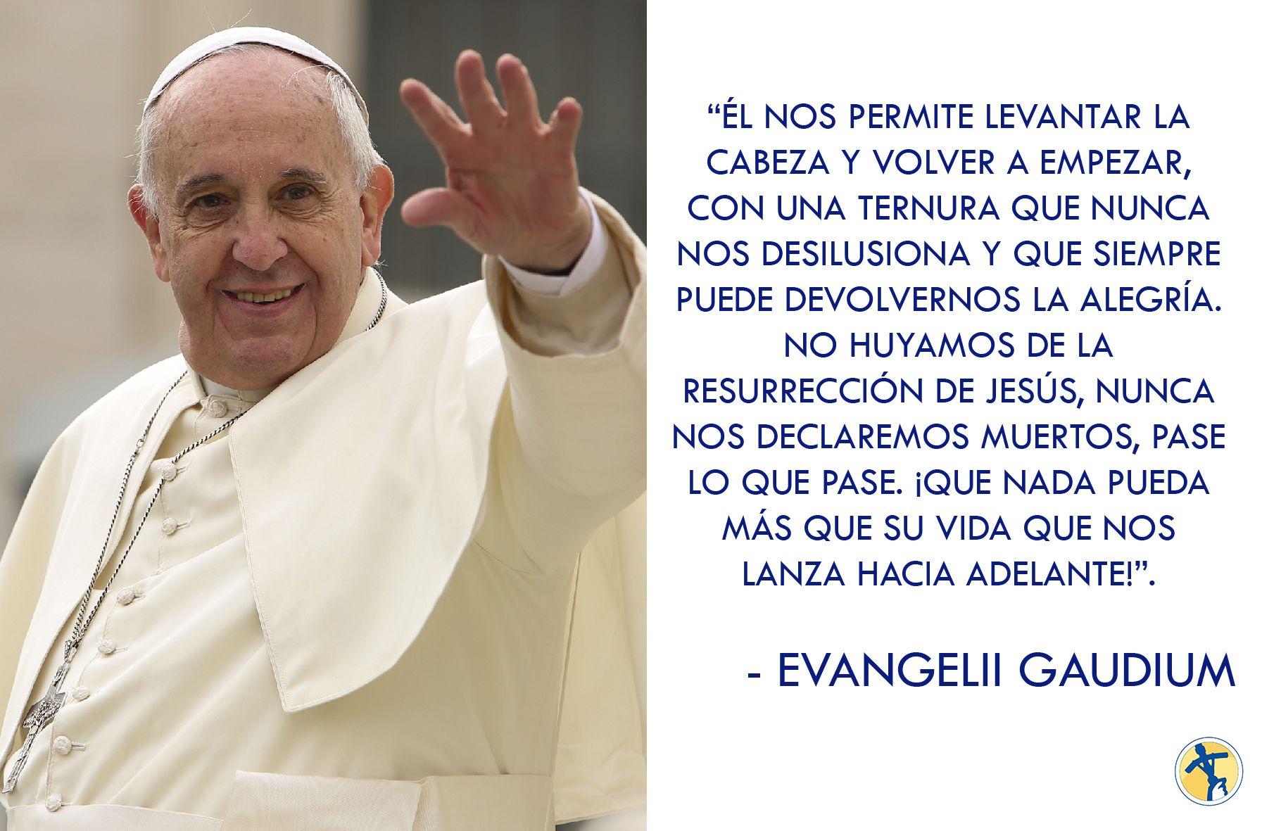 Cita De La Exhortación Apostólica Evangeliigaudium Del Papafrancisco Catolico Iglesia Fe Católica Papa Francisco Catolico