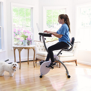 Top 5 Best Exercise Bikes With Buying Guide With Images Best