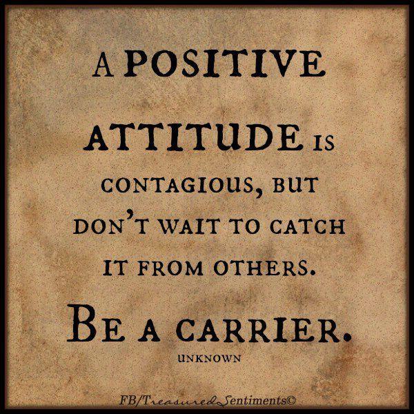 attitude carrier
